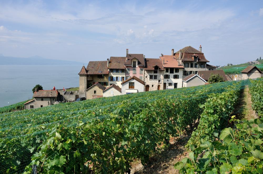 Ortsteil Espesses in Bourg-en-Lavaux