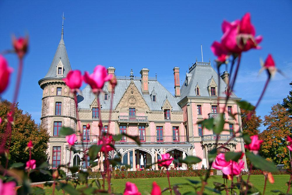 Schloss Schadau in Thun durch Rosen fotografiert