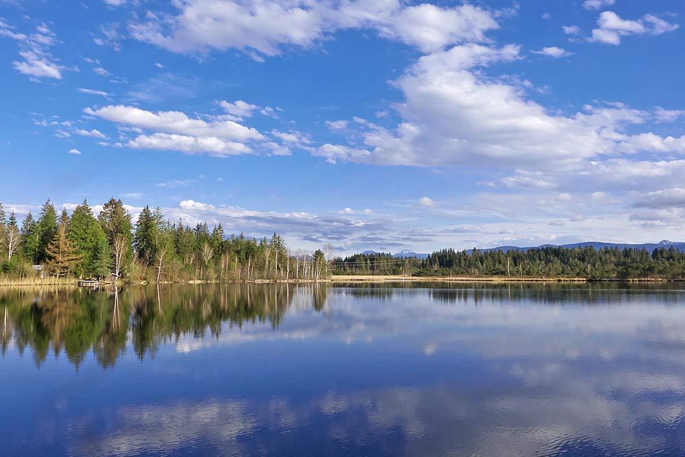 Der Kirchsee im Naturschutzgebiet Ellbach- und Kirchseemoor bei Sachsenkam