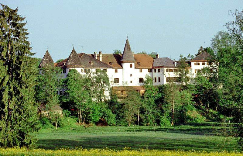 Blick auf Schloss Reichersbeuern inmitten von Bäumen