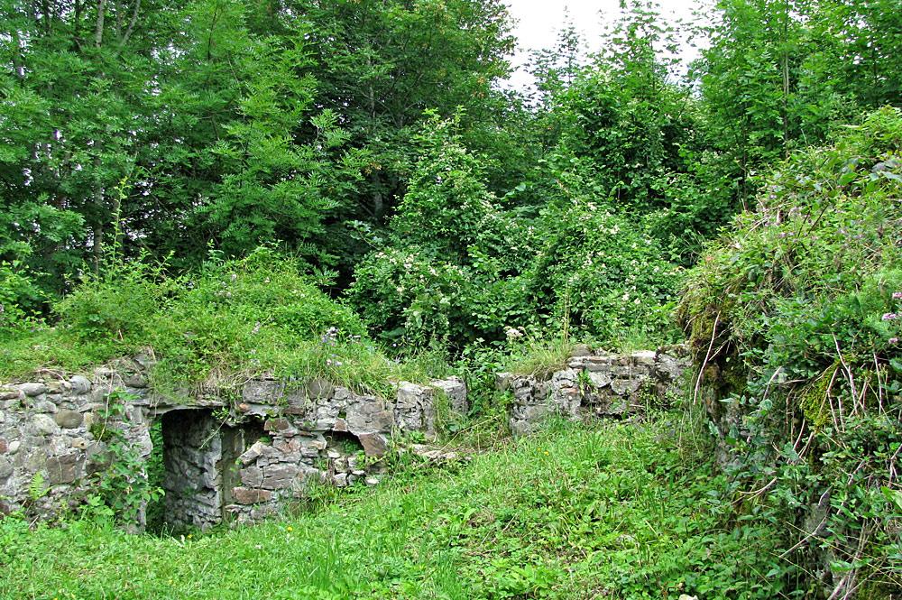 Burgruine Altlaubenberg bei Grünenbach