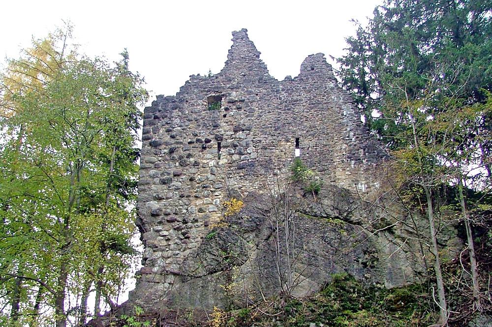 Blick auf die Ruine von Burg Burgberg