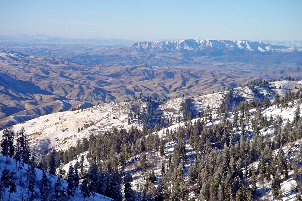 Baumbestandene Landschaft um das Skigebiet Bogus Basin im Winter