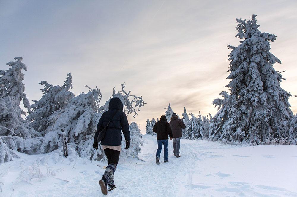 Drei Winterwanderer im Erzgebirge bei Geising