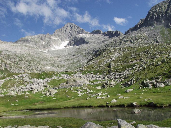 Natur im Naturpark Adamello-Brenta