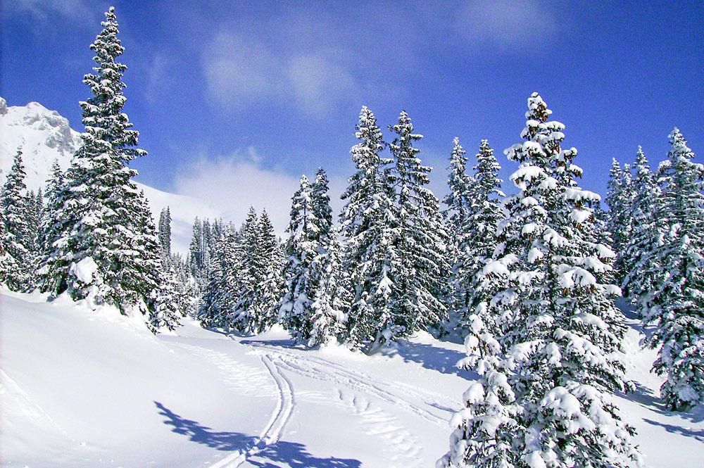 Schneelandschaft auf der Ehrwalder Alm