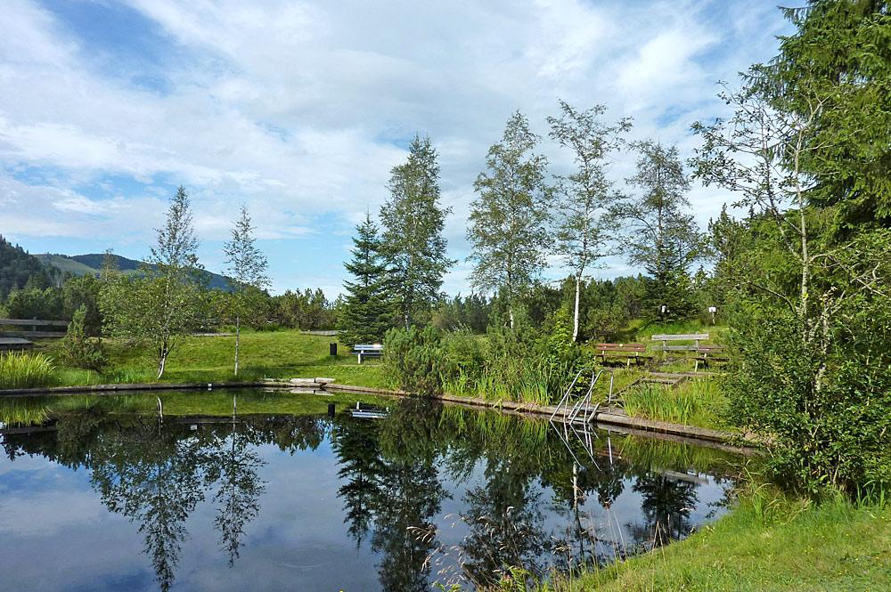 Becken des Hochmoorschwimmbads Oberjoch