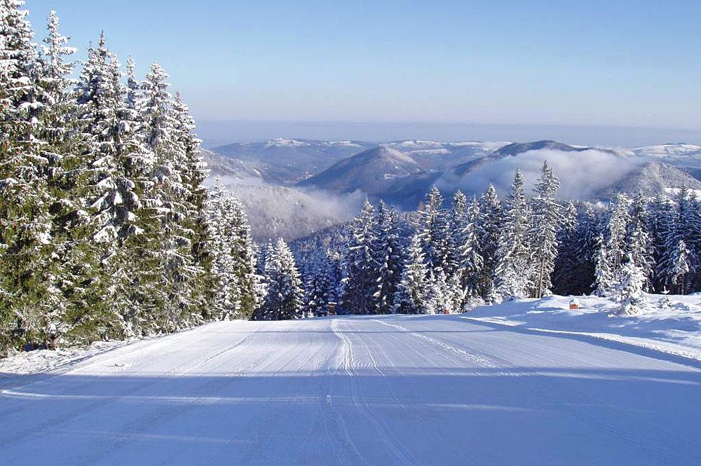 Blick auf eine Piste im Skigebiet Forsteralm