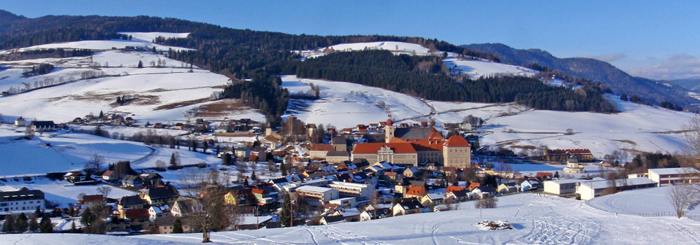 Blick auf St. Lambrecht im Winter
