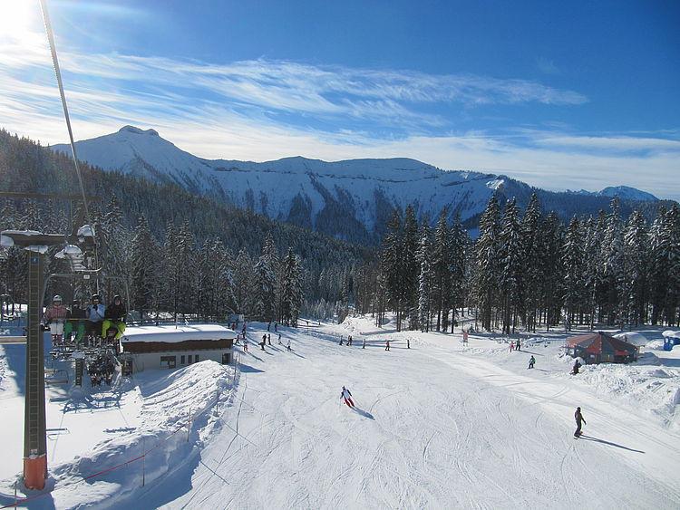 Blick auf die Piste im Skigebiet Gaissau-Hintersee