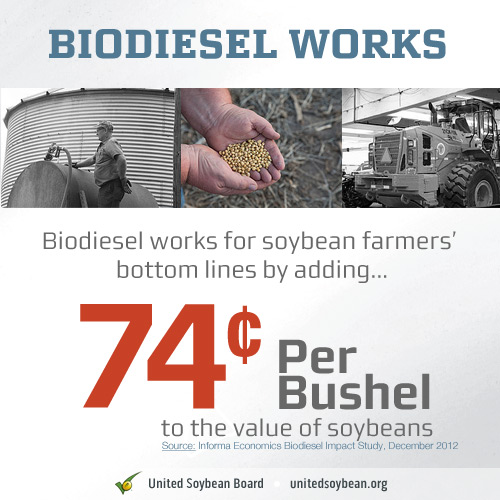 biodiesel infographic