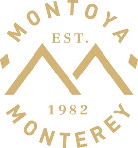 Asv montoya logo gold
