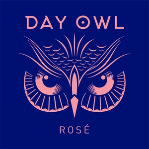 Dayowl rose salmon lock up on blue background