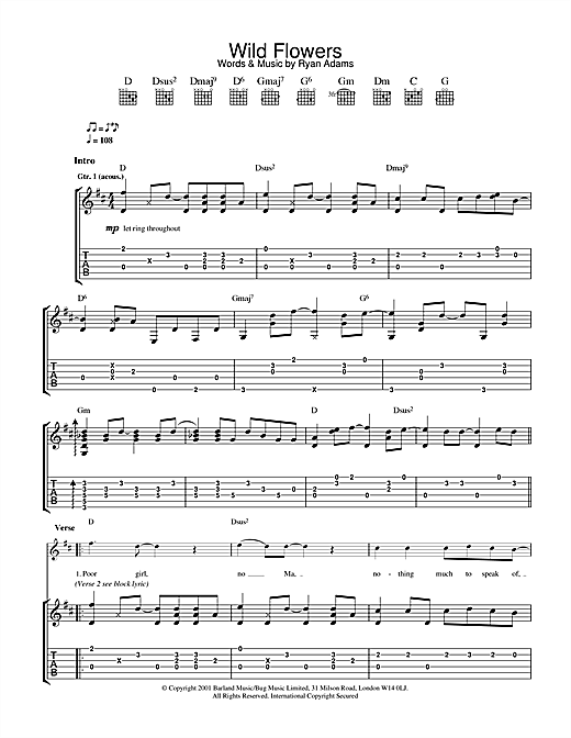 Tablature guitare Wild Flowers de Ryan Adams - Tablature Guitare