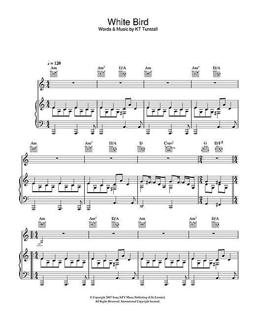 White Bird Sheet Music