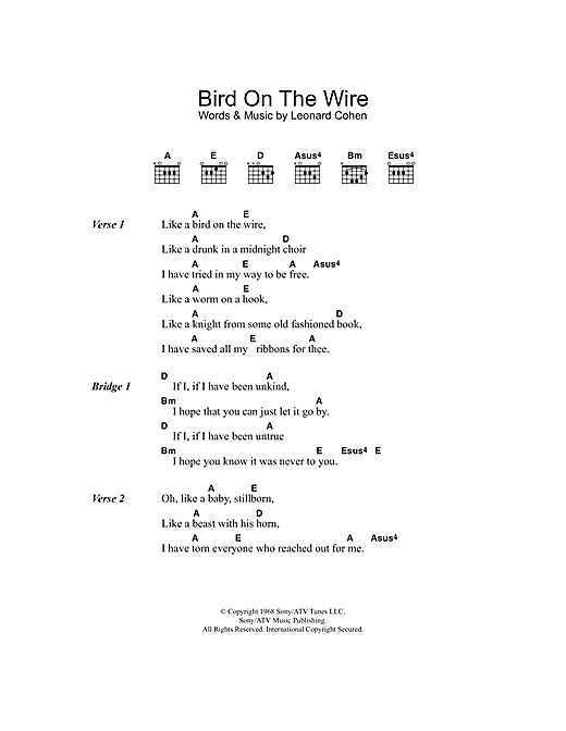 Bird On The Wire (Bird On A Wire) Sheet Music
