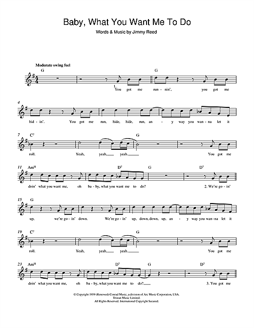 Baby, What You Want Me To Do Sheet Music
