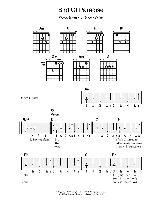 Tablature guitare Bird Of Paradise de Snowy White - Guitare