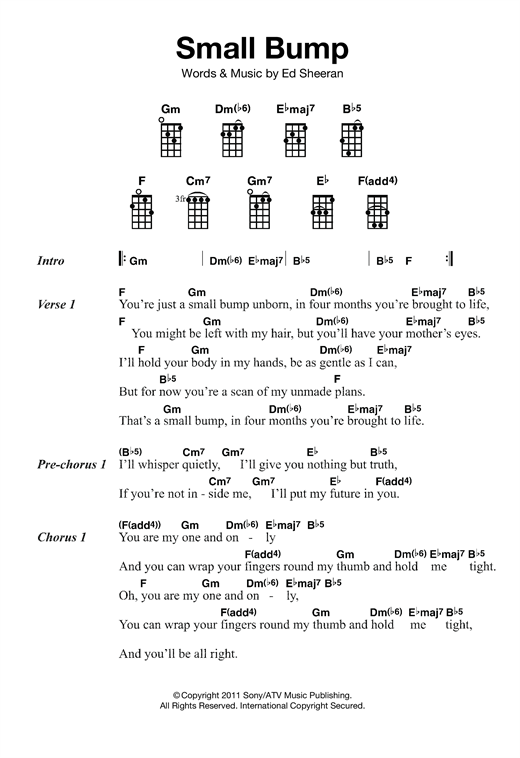 Small Bump Sheet Music