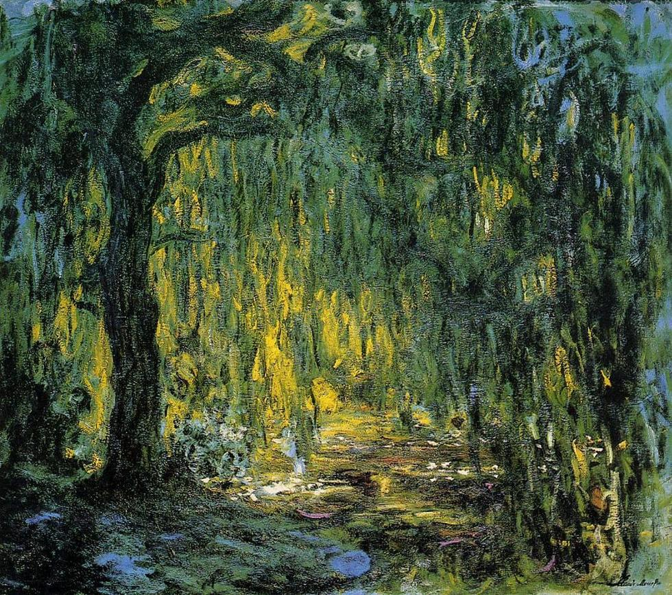 Xas4qqyxrsmdsbbb1if6 weeping willow 2 1919