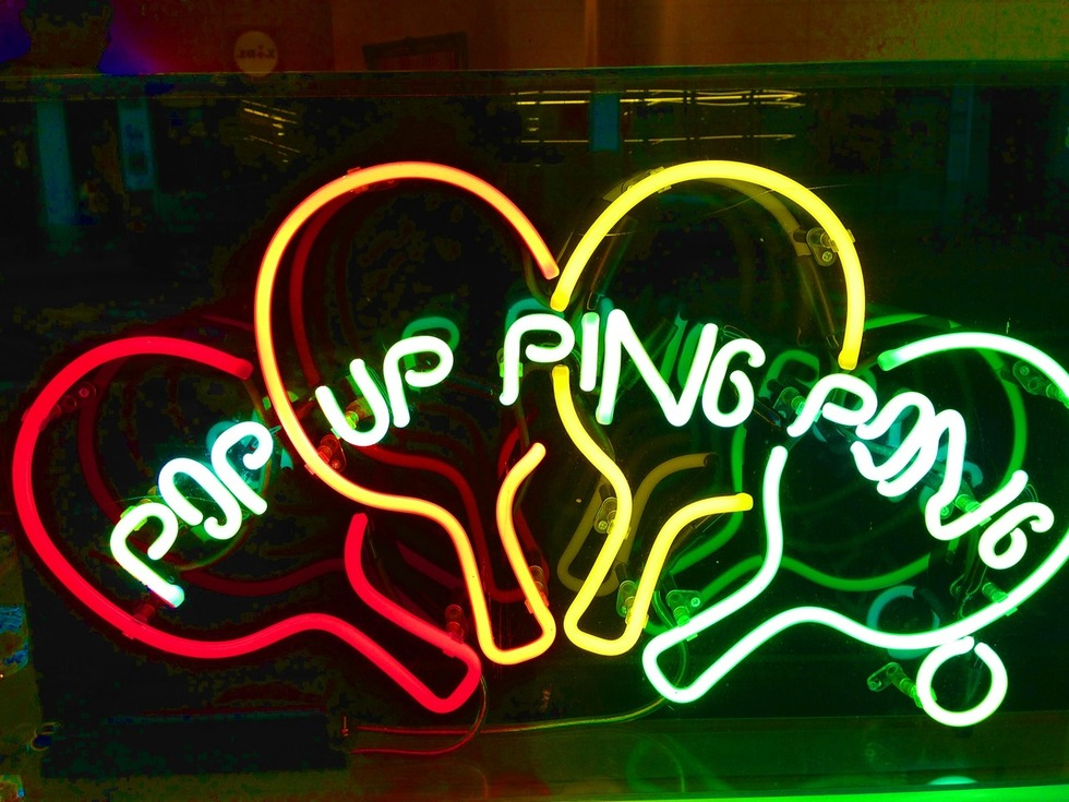 Section_image_pupp_neon_bright