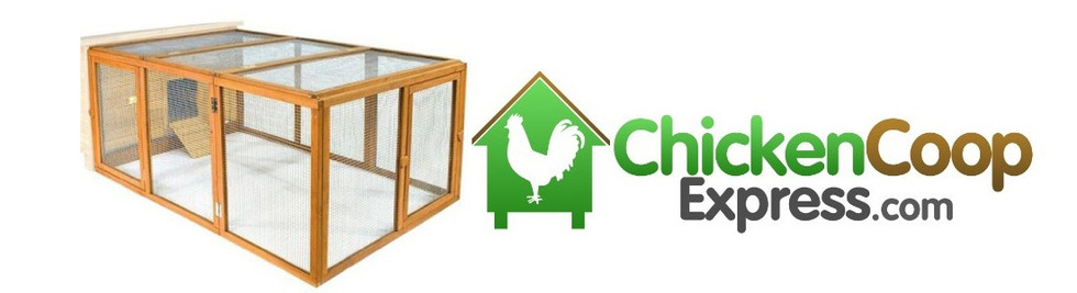 Section image chicken coop express banner 5