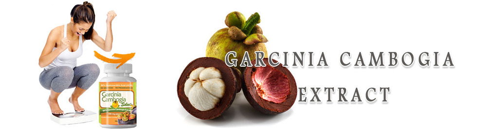 Section image garcinia cambogia extract banner 1