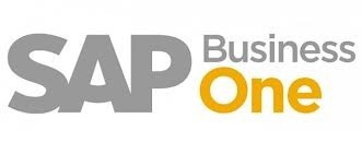 Section image sap business one