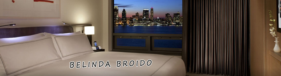 Section image belinda broido banner 4