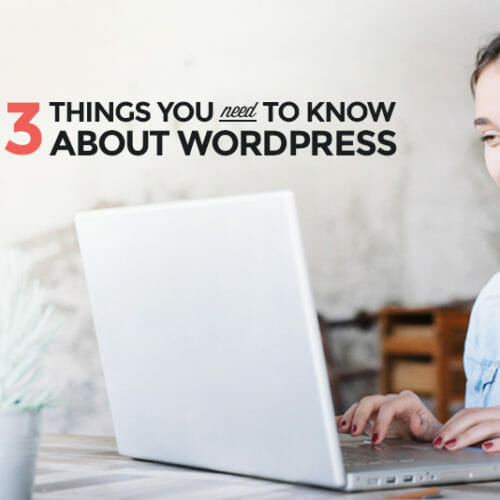 13 Things You Need to Know About WordPress
