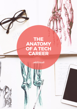 Get Our FREE Anatomy of a Tech Career Guide