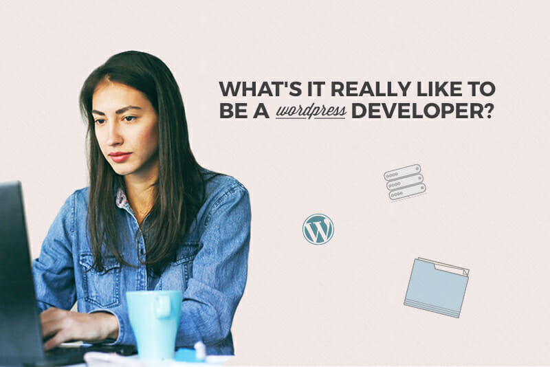 What's It Really Like to Be a WordPress Developer?