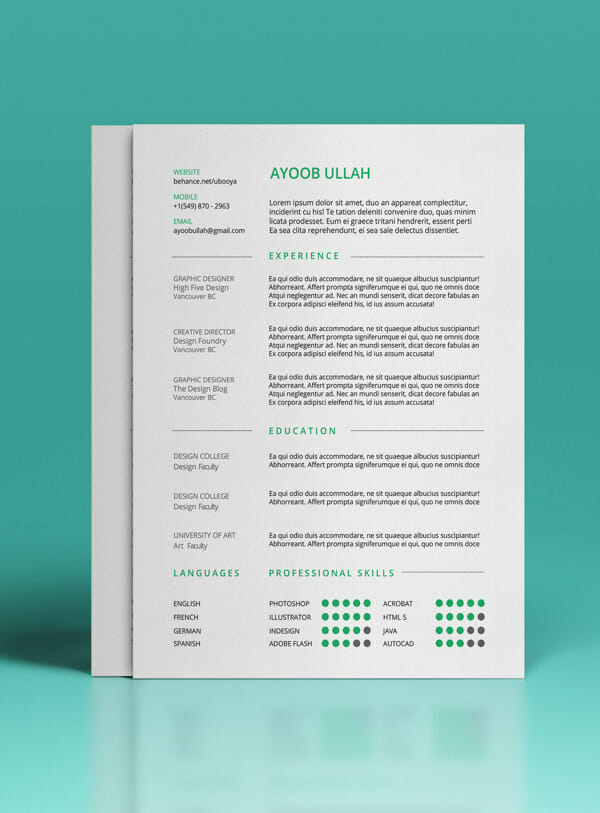 Free Photoshop Illustrator Resume Template  Resume Free