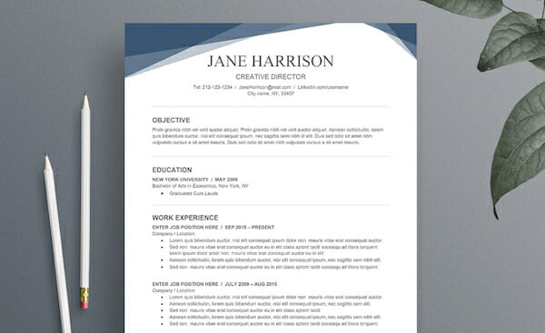 Blue Resume Ms Word Free