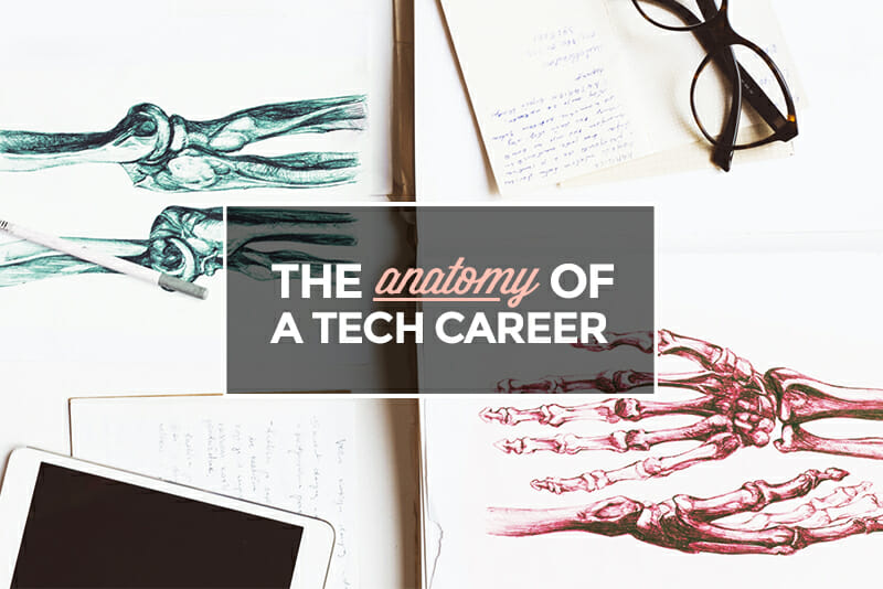 The Anatomy of a Tech Career