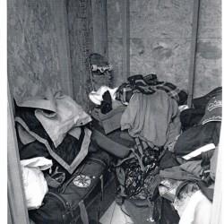 Trojan Storage of Flo - ID 657880