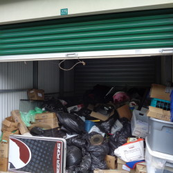 Prime Storage - Green - ID 795172