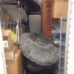 Extra Space Storage - ID 923559