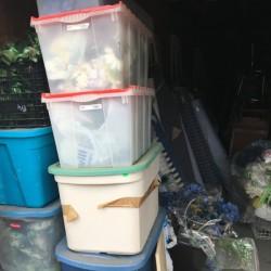 Dna Self Storage - ID 997159