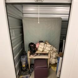 Dino's Storage- Des M - ID 1042020