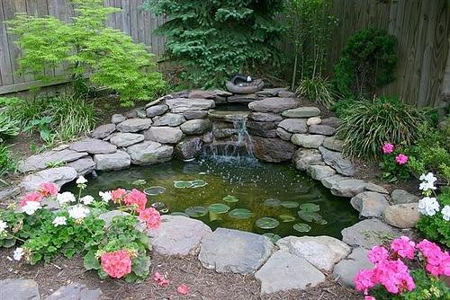 Outstanding Small Water Features and Ponds 500 x 334 · 52 kB · jpeg