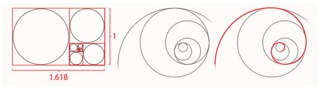 golden ratio in web design - Golden Ratio in Web Design, Why do You need to Use It?