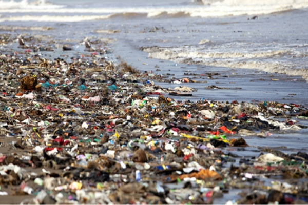 Pollution - Plastic Pollution its Types, Sources, Effects