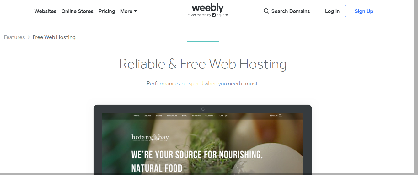 Weebly - Top 10 Web Hosting Companies in 2021 | Detailed Review