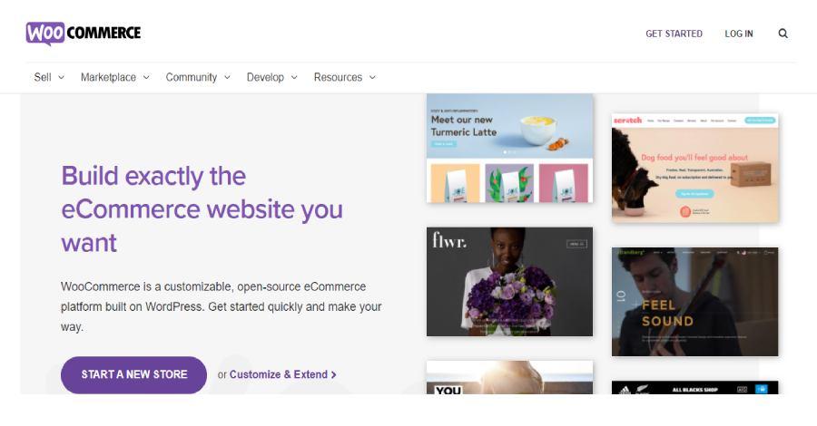 Woo commerce - Best ecommerce platform in 2021