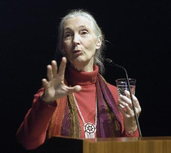 Primatologist JANE GOODALL addresses an audience at the New England Aquarium's IMAX Theatre last night after receiving the 2003 Global Environmental Citizen Award.