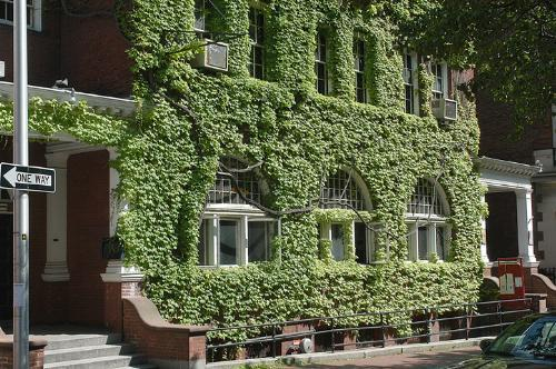 The ivy-covered Hasty Pudding on Holyoke Street will need to undergo $100,000 worth of fire-safety upgrades before Cambridge authorities will allow the student theater space to open its doors again.