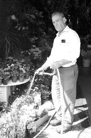 Gerry Dahme, an employee of Brattle Street Florist shop, watered his plants on a sunny day this week.