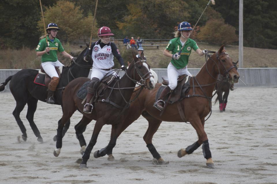 Harvard women's polo captain Samantha Drago, pictured above, has notched 39 goals this season. Like most members of the polo club, Drago had never played the sport until she arrived at Harvard. But under the guidance of Harvard's husband-wife coaching duo, Drago quickly picked up the sport.