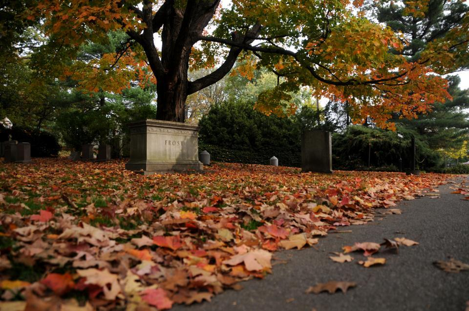 Fall foliage is at its chromatic peak in Mt. Auburn Cemetery, as red, orange, and yellow leaves litter the graves and monuments.